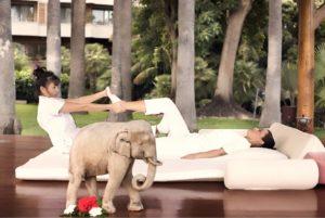Physiotherapie mit Hotel Botanico