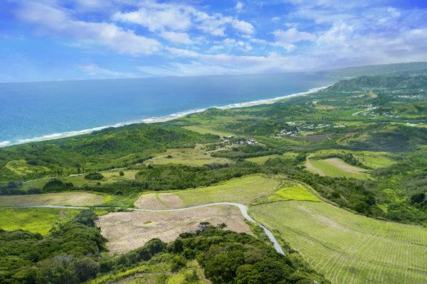 Bajans und Touristen werden gemeinsam aktiv© Barbados Tourism Marketing Inc.
